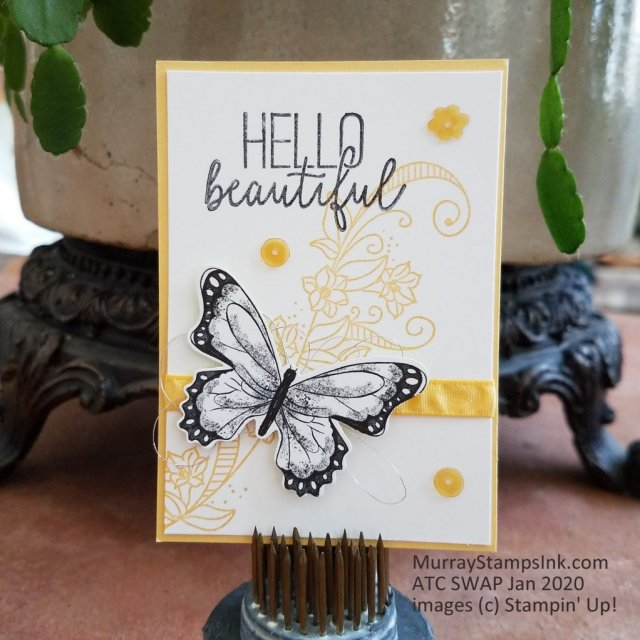 Hello Beautiful message with butterfly