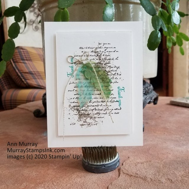 2 vellum feathers on a script background