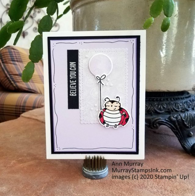 ladybug with balloon and Believe you Can message