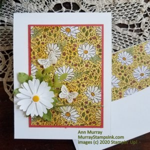 daisy background with daisy focal point embellishment and white vellum embossed butterflies